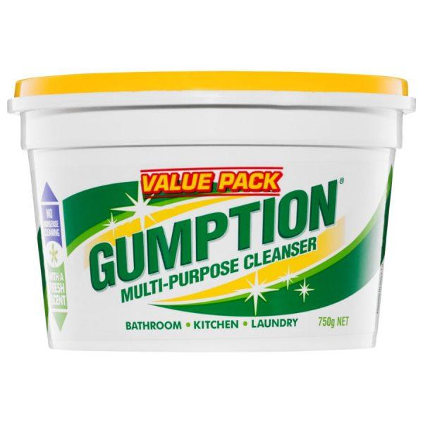 Clorox Gumption